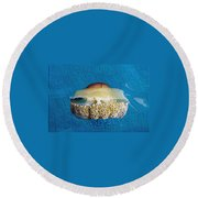 Cassiopeia Jellyfish Abstract Round Beach Towel