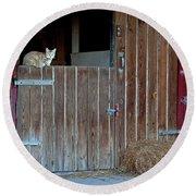Cat And Barn Round Beach Towel