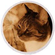 Cat And Clock Round Beach Towel