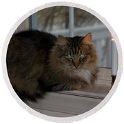 Cat By Candlelight Round Beach Towel