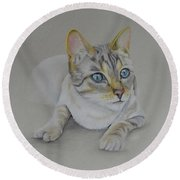 cat drawing - Jackson Round Beach Towel