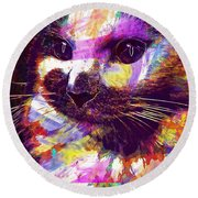 Cat Head Face Macro Close Up  Round Beach Towel