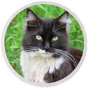 Cat Lawrence Round Beach Towel