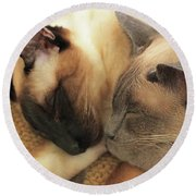 Cat Nap With Toby And Sadi Round Beach Towel