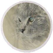Cat, Nikita Il Gatto. Round Beach Towel