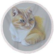 cat portrait - Astra Round Beach Towel