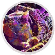 Cat Purr Kitten Pet Fur Feline  Round Beach Towel