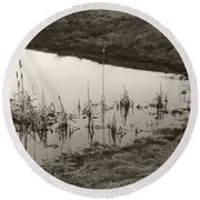 Cat Tail Reflections Round Beach Towel