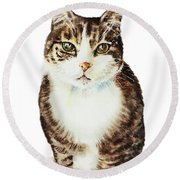 Cat Watercolor Illustration Round Beach Towel