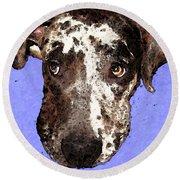 Catahoula Leopard Dog - Soulful Eyes Round Beach Towel by Sharon Cummings
