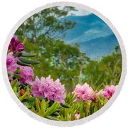 Catawba Rhododendron At The Craggy Round Beach Towel