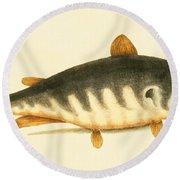 Catfish Round Beach Towel
