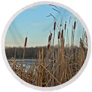Cattails At Skymount Pond Pa Round Beach Towel