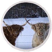 Cattle Cousins Round Beach Towel
