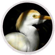 Cattle Egret In Shadow Round Beach Towel