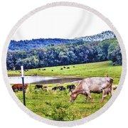 Cattle Farm Round Beach Towel
