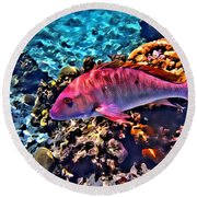 Cayman Snapper Round Beach Towel