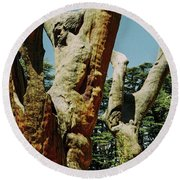 Cedars Of God Jesus Tree  Round Beach Towel