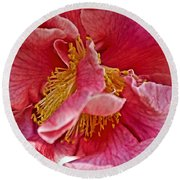 Center Of A Pink Camellia At Pilgrim Place In Claremont-california  Round Beach Towel
