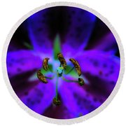 Center Of The Asiatic Lily Round Beach Towel