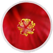 Center Of The Hibiscus Universe Round Beach Towel