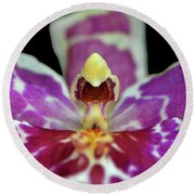 Centerpiece - Purple Orchid Macro Round Beach Towel