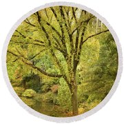 Central Park In Autumn Texture 5 Round Beach Towel