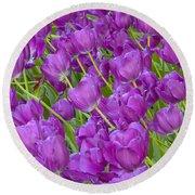 Central Park Spring-purple Tulips Round Beach Towel