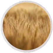 Cereal Field Round Beach Towel