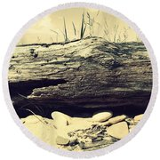 Chafer Round Beach Towel