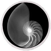 Chambered Nautilus Shell Round Beach Towel
