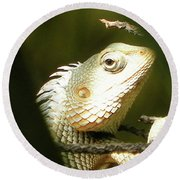 Chameleon Up-close 1 Round Beach Towel