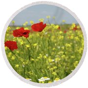 Chamomile And Poppy Flowers Meadow Round Beach Towel
