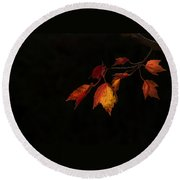 Changing Color Fall Maple Leaves On Black Round Beach Towel