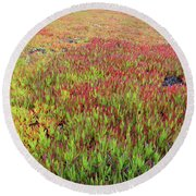Changing Landscape II Round Beach Towel