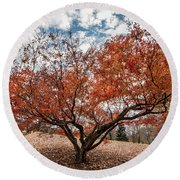 Changing Of Seasons Round Beach Towel
