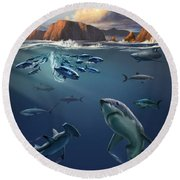Channel Islands Sharks Round Beach Towel