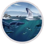 Channel Islands Whales Round Beach Towel