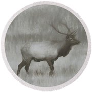 Charcoal Bull Elk In Field Round Beach Towel