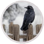 Charming Corvid Round Beach Towel
