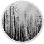 Charred Trees Round Beach Towel