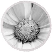 Cheery Daisy - Black And White Round Beach Towel