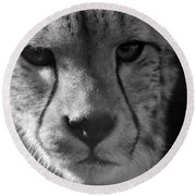 Cheetah Black And White Round Beach Towel