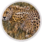 Cheetah In The Grass Round Beach Towel