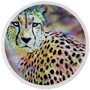 Cheetah Viii Round Beach Towel