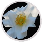 Cherokee Rose On Black Round Beach Towel