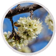 Pear Blossom And Bee Round Beach Towel