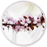 Cherry Blossom Branch Round Beach Towel