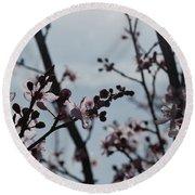 Cherry Blossom Transparency Round Beach Towel