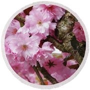 Cherry Blossom Tree Round Beach Towel